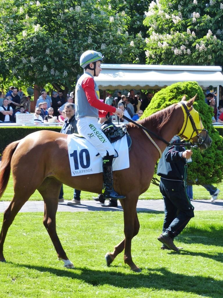 horse-racing-784726_1280